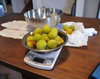 塩の分量を決めるため梅の重量を計るー